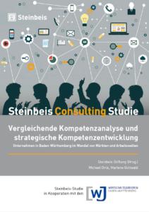 Consulting Studie 2016 Kompetenzanalyse